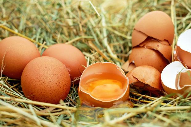 5 modi per cucinare le uova